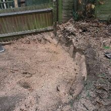 Stump Removal in Barnes South West London.jpg