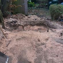 Stump removal in Wembley North West London.jpg